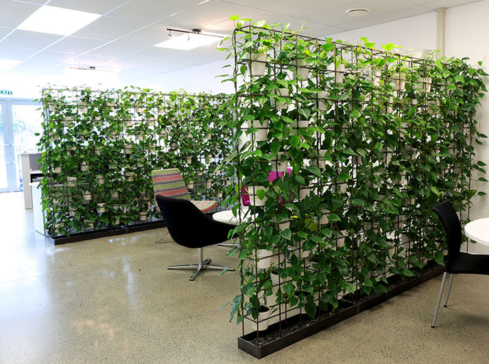 Vertical Plant Walls Fuze Business Interiors